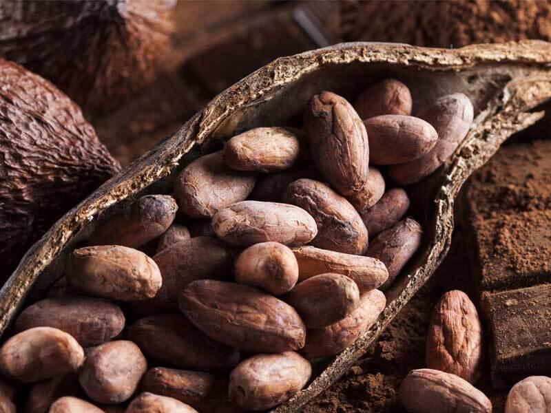 Schokolade - Historisches & Wissenswertes